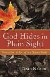 Dean Nelson - God Hides In Plain Sight