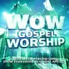 Various - WOW Gospel Worship