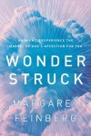 Margaret Feinberg - Wonder Struck