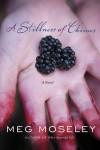 Meg Moseley - A Stillness of Chimes: A Novel