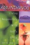 John Peterson - Abundance: Living Responsibly with Gods Gifts (Bible Study for Young Adults 20/30)