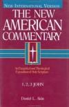 Daniel L. Akin - 1, 2, 3 John